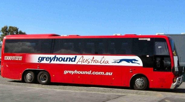 Greyhound Bus Australia
